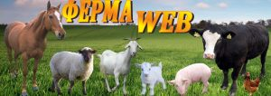 ферма уеб-fermaweb